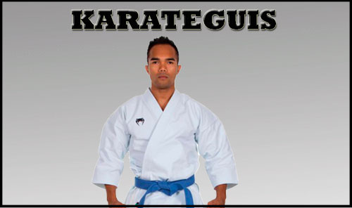 Karateguis